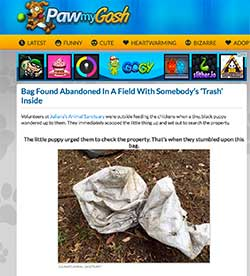 Paw My Gosh: Bag Found Abandoned In A Field With Somebody's 'Trash' Inside