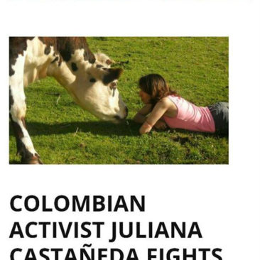 The Thinking Vegan: COLOMBIAN ACTIVIST JULIANA CASTAÑEDA FIGHTS AND WINS FOR ANIMALS
