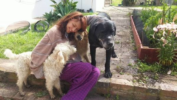 New Chickens and Stray Dogs at Juliana's Animal Sanctuary