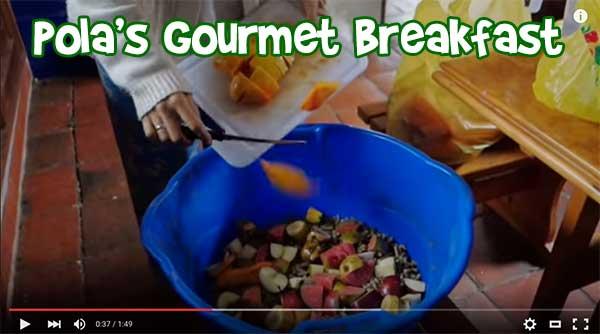 Pola's Organic Vegan Gourmet Breakfast