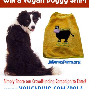 Win a VEGAN Doggy Shirt