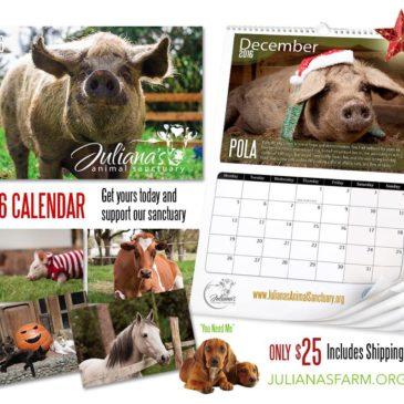 2016 Juliana's Animal Sanctuary Calendar
