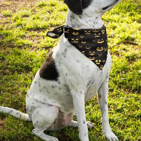 mockup-of-a-dog-with-a-bandana-33285