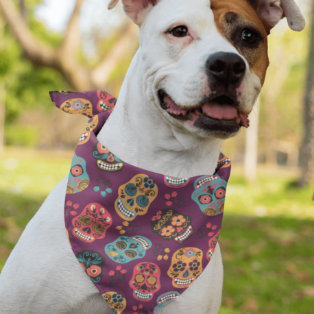 sublimated-bandana-mockup-featuring-a-dog-33282