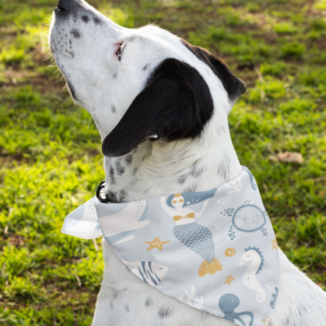 bandana-mockup-featuring-a-dog-outside-33286 (1)
