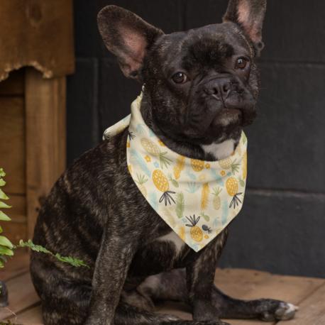 bandana-mockup-of-a-sitting-french-bulldog-33275 (1)