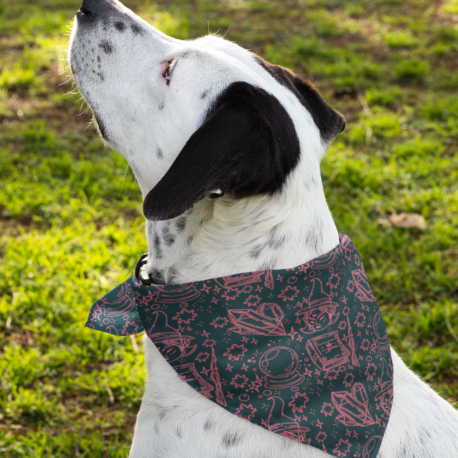 bandana-mockup-featuring-a-dog-outside-33286 (1)